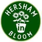 Actual HIB logo